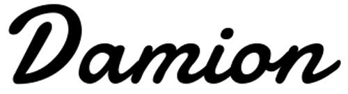 damion01
