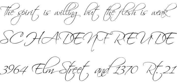 細い線が美しく、ポップさも感じれらる筆記体フォント。
