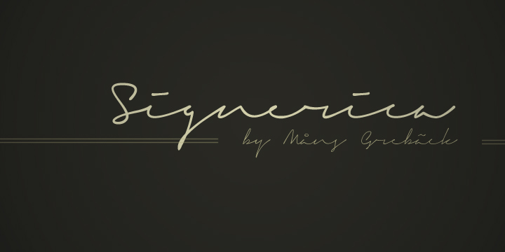 signerica01