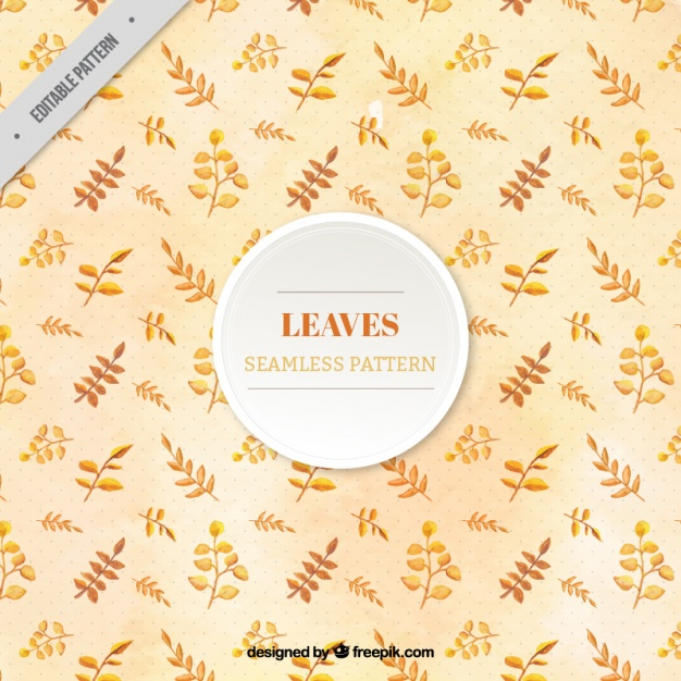 Autumnal pattern with different types of leaves